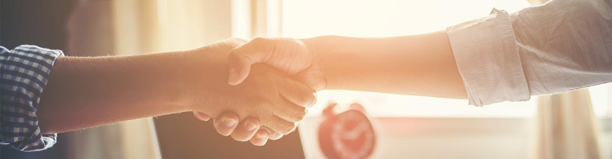 Career handshake